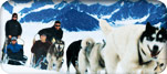 http://media.royalcaribbean.es/content/es_CA/images/destinations/regions/gateway_thumbnail/dst_alcan_huskies_img_151.jpg